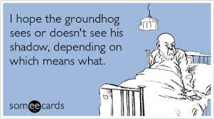 funny groundhog memes u0026 ecards someecards