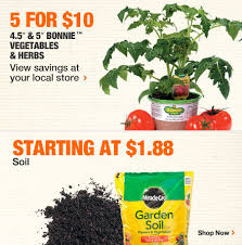 plants on sale at home depot for black friday home depot herbs for sale home printable u0026 free download images