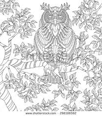 owls art therapy coloring pages pesquisa google coloring pages