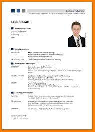 Lebenslauf Vorlage Karenz Professioneller Lebenslauf Muster Anschreiben 2018