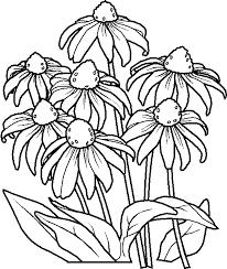 fiori disegni i disegni per bambini fiori by megghy