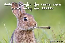 Funny Easter Memes - top 10 best happy easter weed memes stoner easter bunny