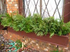Window Box Decorations For Christmas by Small Space Diy Tiny Trees For A Winter Window Box Window Box