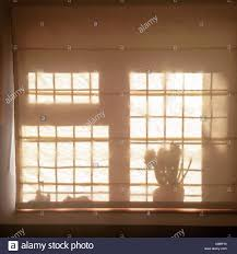 sunlight through window blinds stock photo royalty free image