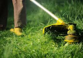 home silvestre lawn care llc