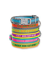 Comfortable Dog Collars Personalized Dog Collars Personalized Adjustable Dog Collar Orvis