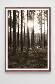 woods u0027 poster by swedish interior brand low key photography by