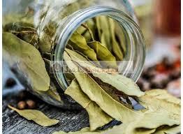 laurier cuisine feuilles de laurier sauce séchées haute qualité 25 gr souk