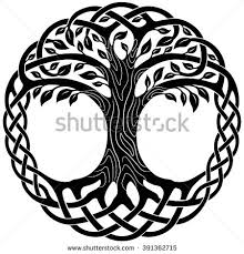 celtic tree stock images royalty free images vectors