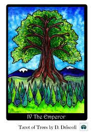 the emperor u0026 the mighty oak tree u2013 soul searching u2013 finding the