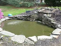 Pond In Backyard by Backyard Pond Rebuild Hometalk