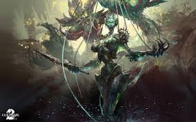 guild wars factions 2 wallpapers guild wars wallpaper 129 images pictures download