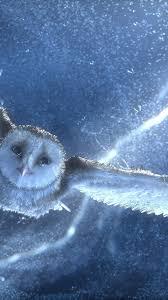 white owl 2 wallpapers wallpaper owl flying snow storm lightning blue bird art