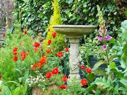 Wildlife Garden Ideas Creating A Wildlife Garden Courtyards Small Gardens Saga