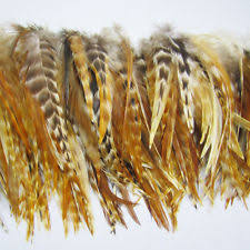 feathers for hair feather hair extensions ebay