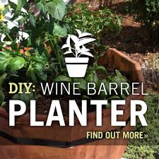 Wine Barrel Home Decor Garden Design Garden Design With Wine Barrel Planters Home Design