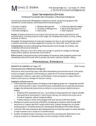 Security Officer Resume Examples And Samples Security Officer Resume Sample U2013 Okurgezer Co