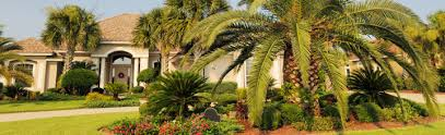 Landscaping Company In Miami by Welcome To Miami Management Inc
