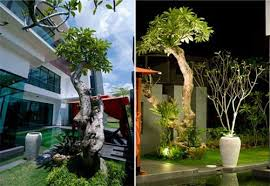 cute small garden landscape design malaysia best garden reference
