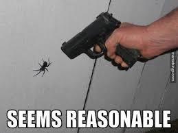 I Saw A Spider Meme - giant spider memes image memes at relatably com