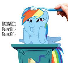Mlp Rainbow Dash Meme - my little pony memes no 166 dedicated to rainbow dash wattpad