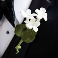 Groom S Boutonniere Groom U0027s Choice Articles Easy Weddings