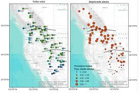 Canada And Usa Map by Forests Free Full Text Delphinella Shoot Blight On Abies