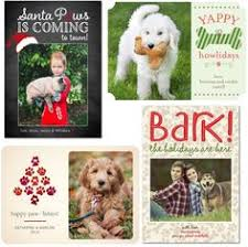 themed sayings dog rescues pictures with santa christmas card dog