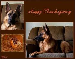 happy thanksgiving 20 to chance sale kafkaesque