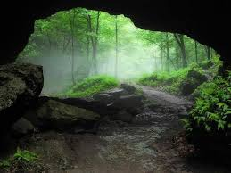 Iowa forest images Foggy forest under biggest rock bridge in iowa picture of jpg