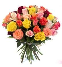 multicolored roses bouquet of 51 multicolored roses 60 70cm доставка цветов кишинев