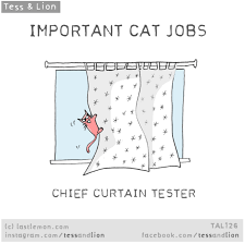 Things In The Bathroom 9 Important Cat Jobs All Cat Owners Will Immediately Recognize