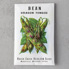 dragon tongue bush bean seeds terrain