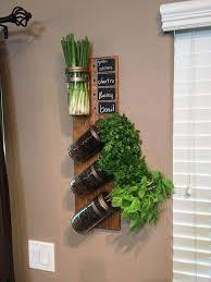 indoor herb garden wall mounted gardening ideas