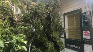 Hemingway House Key West Hurricane Irma Leaves The Florida Keys Bowed But Unbroken