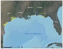 Florida Sea Level Rise Map by Sea Level Rise
