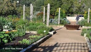 collection vegetable garden designer photos free home designs