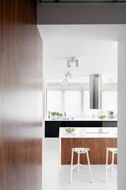 House Designs Kitchen 112 Best Minimalist Kitchen Images On Pinterest Kitchen