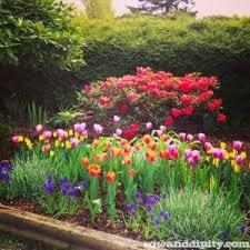 photos designing flower garden drawing art gallery