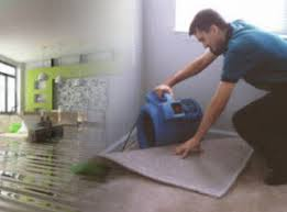 upholstery cleaners las vegas tough carpet cleaning las vegas carpet rug upholstery cleaning