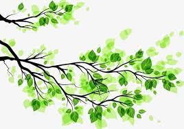 tree trees green creative taobao tree trees green png and