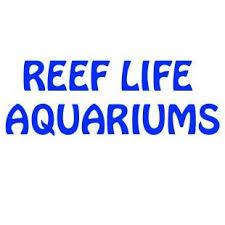 best black friday deals saltwater supplies birmingham u0027s largest selection of saltwater fish corals