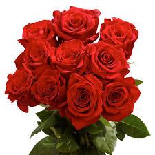 2 dozen roses globalrose 2 dozen roses vars 2 dozen roses the home depot