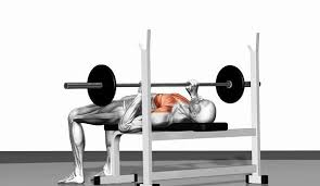 Phil Heath Bench Press Best Chest Workout And Great Chest Workout Exercises For
