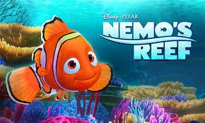 film kartun nemo berita berpetualan di bawah laut bersama clown fish di nemo s reef