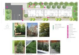 brisbane native plants properties u2013 flyawayhomes