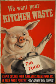 Kitchen Cabinet Salvage File Inf3 224 Salvage We Want Your Kitchen Waste Pig With Dustbin