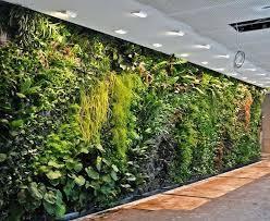 wall garden indoor