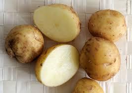 comment cuisiner les pommes de terre de noirmoutier bonnotte de noirmoutier wikipédia