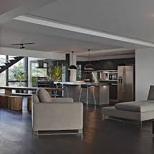 home interior tiger picture picture of the interior of john abraham s mumbai house wonderful